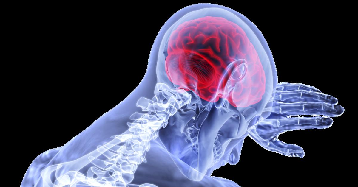 Gli integratori con omega-3 alleviano le infiammazioni cerebrali